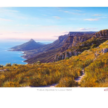 Andrew Cooper | The Studio Art Gallery - Twelve Apostles to Lions Head Limited Edition Print