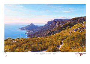 Andrew Cooper | The Studio Art Gallery - Twelve Apostles to Lions Head Limited Edition Print