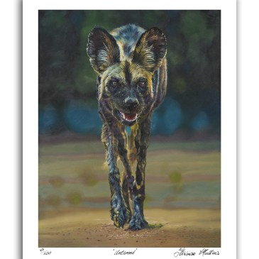 The Studio Art Gallery - Untamed by Therese Mullins - Artist Print on Paper