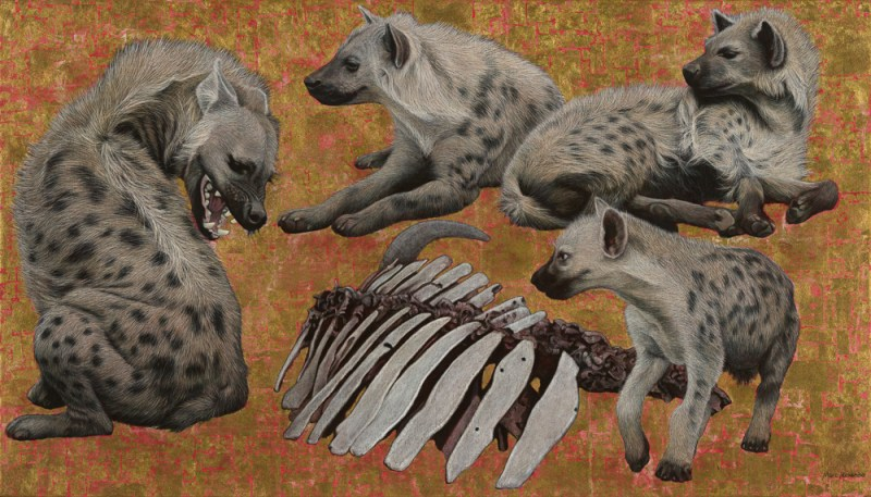 The Studio Art Gallery - Spotted Hyenas by Marc Alexander