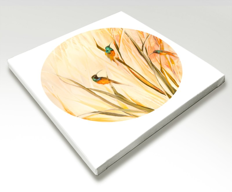The Studio Art Gallery - Sunbirds by Yolo Quinn - Canvas Print Stretched
