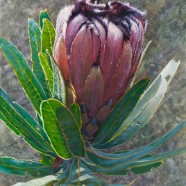 The Studio Art Gallery - Eco-Logic Awards 2019 - Artist for Nature Exhibition - Therese Mullins - And Still You Bloom