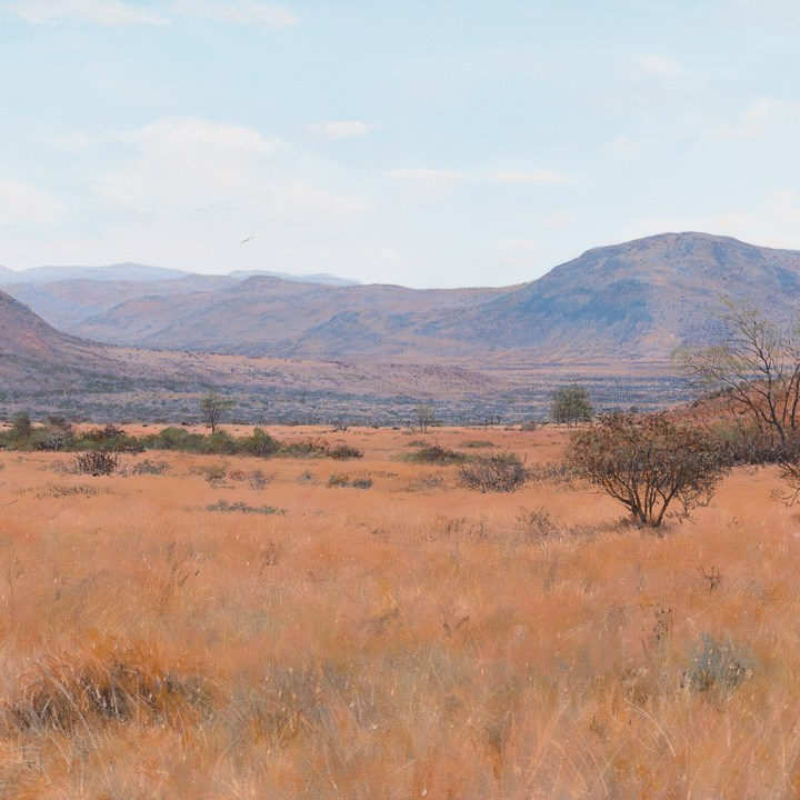Andrew Cooper | The Studio Art Gallery - A Dry October, Pilansberg, Acrylic on Canvas, 100cm by 60cm