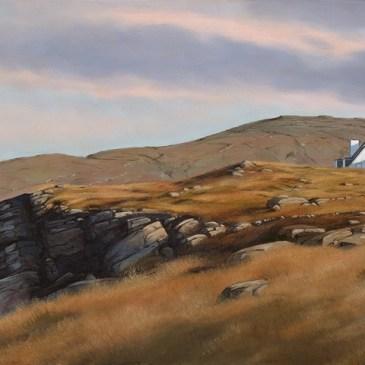 Donna McKellar   The Studio Art Gallery   Unpetrified - A Wild Wild Coast 834