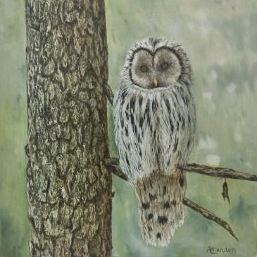 The Studio Art Gallery | 2021 Mandela Day Block Art Exhibition | Angela Van Lienden - Owl in a Tree