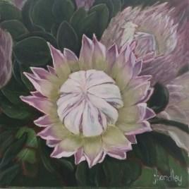 The Studio Art Gallery   2021 Mandela Day Block Art Exhibition   Jenny Handley - Prince Protea