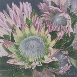 The Studio Art Gallery   2021 Mandela Day Block Art Exhibition   Jenny Handley - Protea - Queen