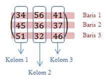 pengertian dan ordo matriks