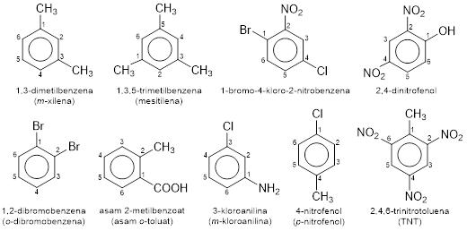 benzena dan turunannya