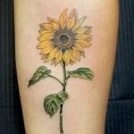Eli Rusakov Studio City Tattoo Los Angeles Body Piercing Voted Best Tattoo Piercing Shops