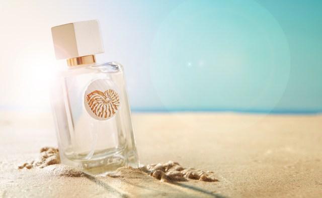 Shell Seeker fragrance on beach