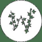 Walls-of-Ivy_logo