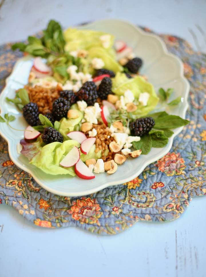 Salad of Blackberries and Toasted Hazelnuts on a blue plate and blue placemat