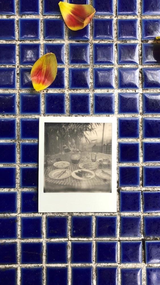 Dunford_garden_table.JPG