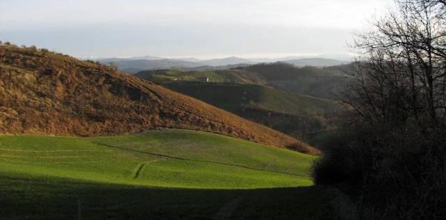 2010 03 28 Riserva del Re Casalgrande (1) bella bella-640