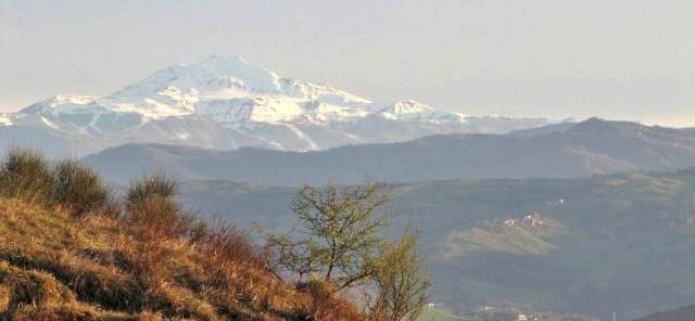 2010 03 28 Riserva del Re Casalgrande (9) bis-640