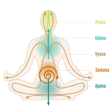 Prana Vayu i 5 Soffi Vitali