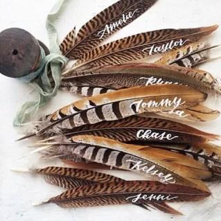 Brown feathers : https://www.instagram.com/p/7WRmXctNTP/
