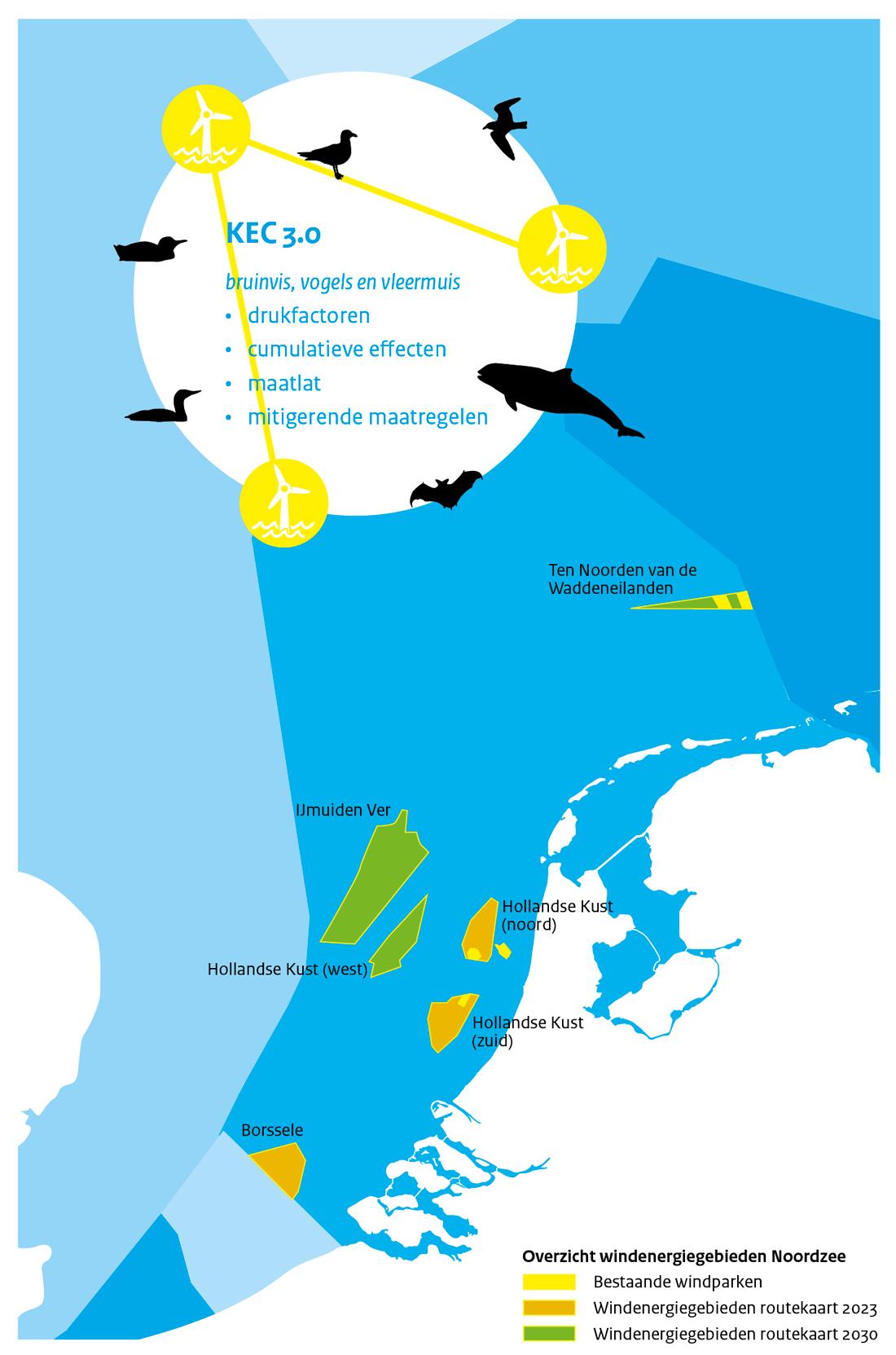 Infographic_IDONnieuwsbriefMaart_KCE3