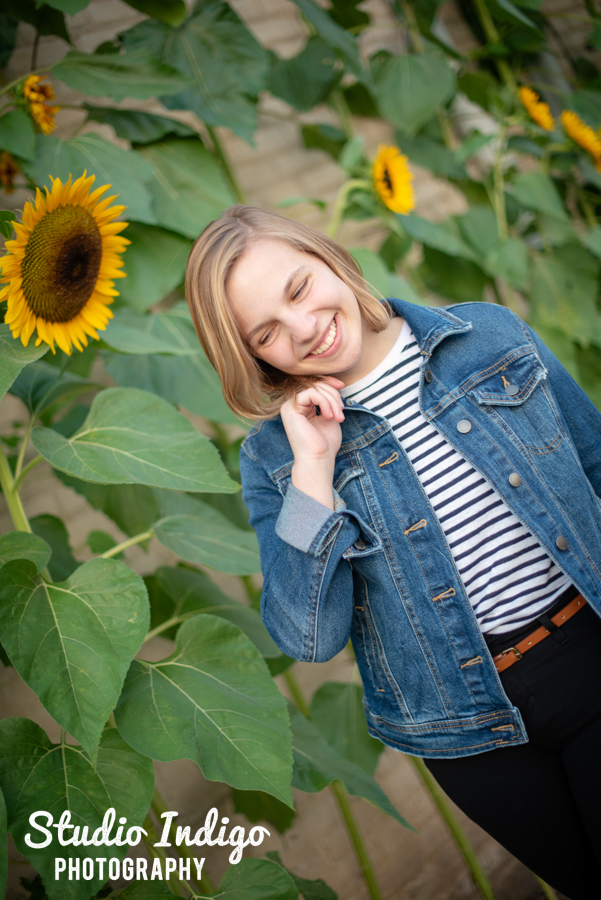 Senior potrtait of girl in jean jacket walking in front of sunflowers looking down and smiling