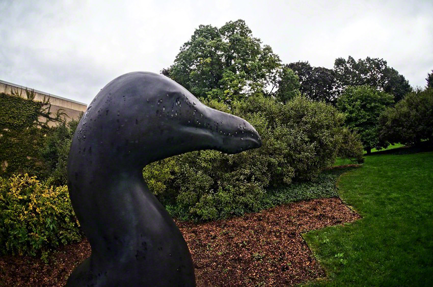 """Great Auk"" by Todd McGrain - View # 2"