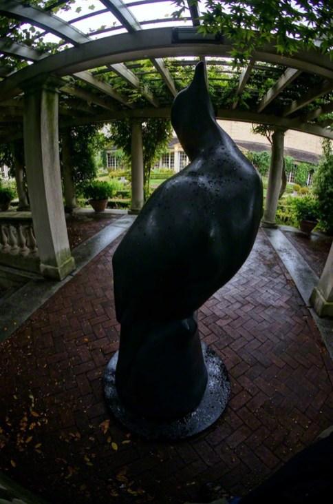 """Passenger Pigeon"" by Todd McGrain - View # 4"