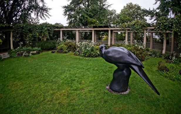 """Carolina Parakeet"" by Todd McGrain - View # 3"