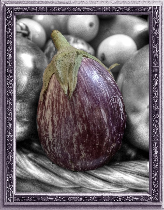 Eggplant in Black & White & Purple