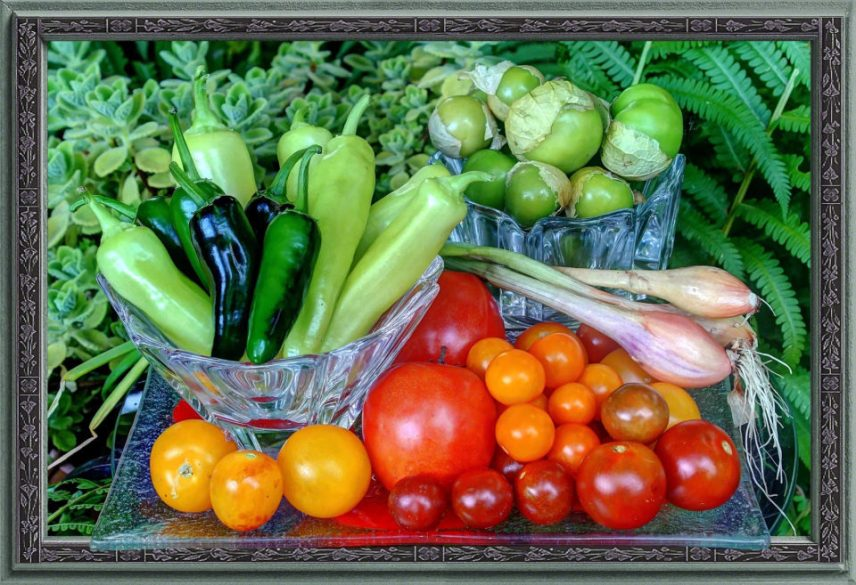 In and from My Garden: homegrown Jalapeno and Banana Peppers, Tomatillos, Tomatoes, Shallots and Cuban Oregano. With Trompe L'oeil frame.