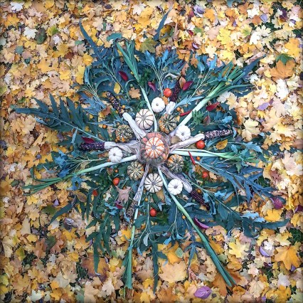 """Earth's Sol is a pretty but average sized yellow/white star. But as there are giants in our reality hundreds of time more massive than our sun, Autumn brings out the largest Heavenly Body in the Edible Universe. Built from nearly everything still growing in my garden in the middle of November (along with choice additions from the public market) this Organic Mandala rests among the Fallen Sky of Backyard Leaves. Layers of Cardone and Leek form the main structure along with Ears of Ornamental Corn. The star is filled out with Rapini (Leaf Broccoli), """"Red Lightning"""" and """"Sun Gold"""" tomatoes, Cayenne Pepper, Spearmint , Pumpkins & Pumpkemons and leaves of the Pear tree. Grow Your Own Art and Make it Big!"""