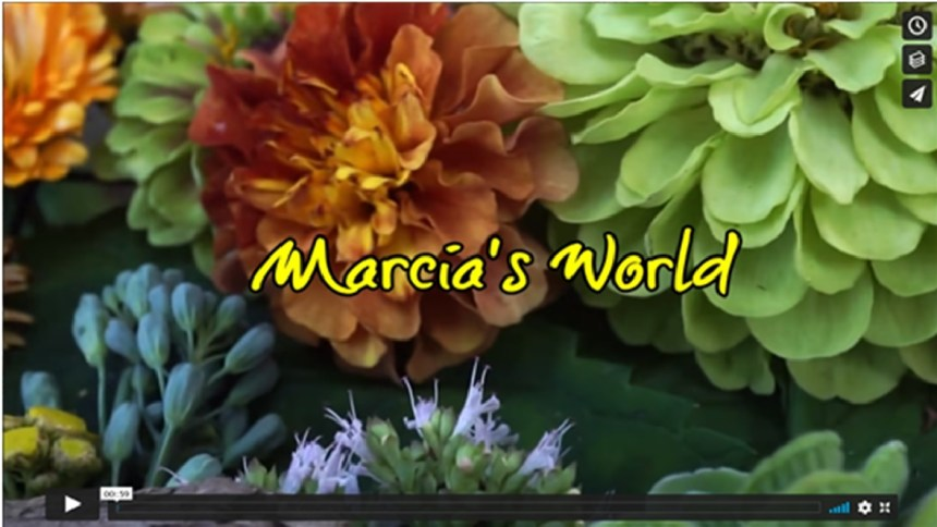 Marcia's World (2 Min.)A fly-over of an organic collage composed by our Artist Marcia. She built these worlds using homegrown flowers and vegetables planted in the summer of 2020. Along with perennials such as hostas, she also added found pieces of bark and cuttings from herbs.