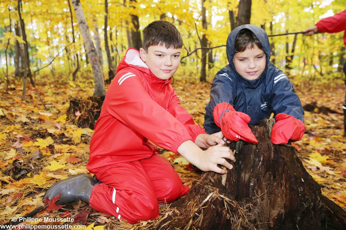 Deux garçons avec imper dans la forêt