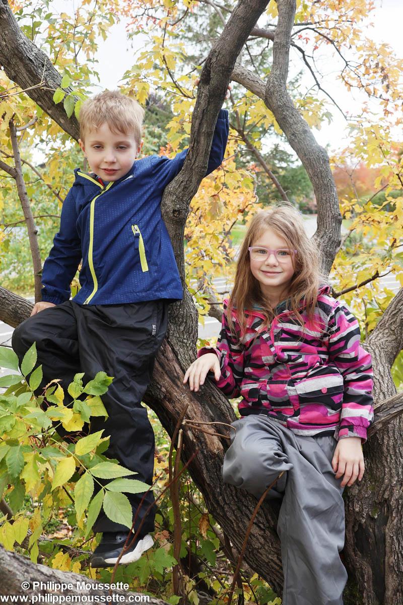 Garçon et fillette assis dans un arbre
