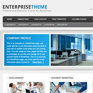 Enterprise Theme