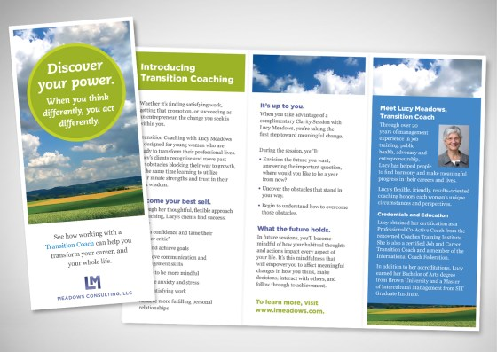 Lucy Meadows Career Coaching Brochure