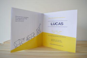 Geboortekaartje op maat Lucas