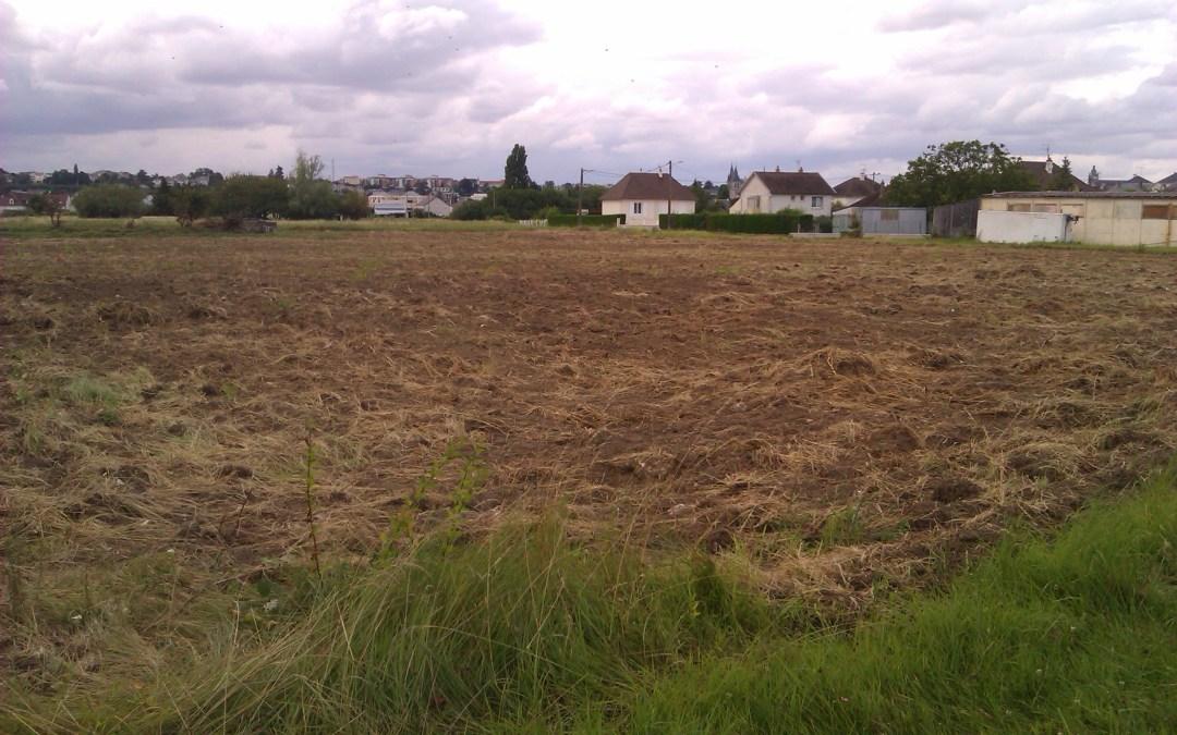 Feuilles vives de l'école du paysage #4 – Une politique agricole urbaine ? Promenade sonore sur les terres agricoles de la Vacquerie