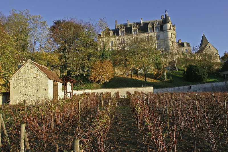 A…Musées-vous ! Le Conservatoire de la vigne et le musée du vin de Châteauvieux