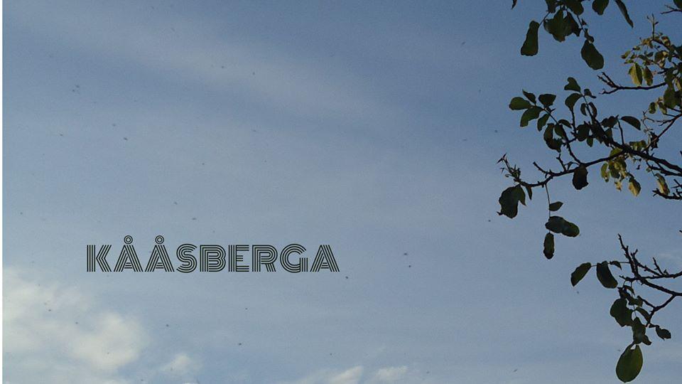 C'est arrivé près d'chez toi #8 – Kaasberga