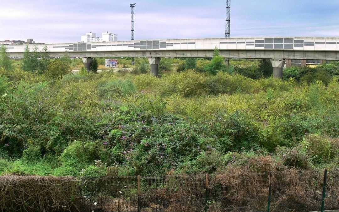La Chose Commune S02E02 : Végétaliser les villes