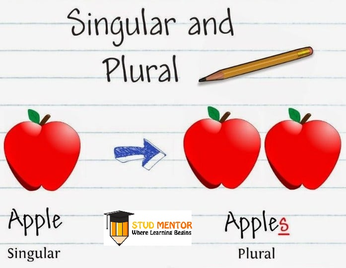 SINGULAR-to-PLURAL Latest by Stud Mentor