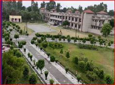 Academic View of JNVs