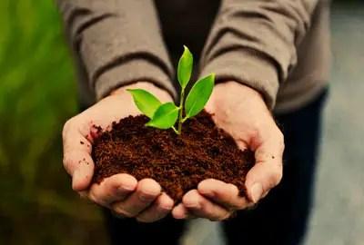 8. Organic Farming