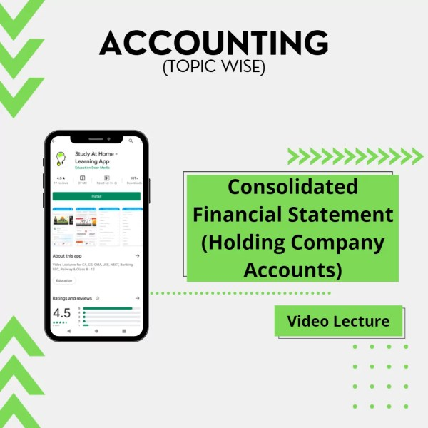 Consolidated Financial Statement (Holding Company Accounts)