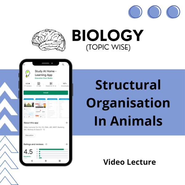 Structural Organisation In Animals