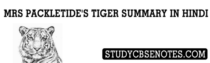 mrs packletide's tiger summary in hindi