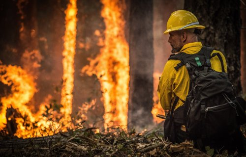 Firefighter battle wildfire, forest fire