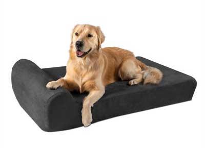 5 best indestructible dog beds studypets