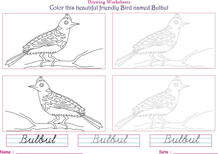 Birds Coloring Pages For Kids Bulbul