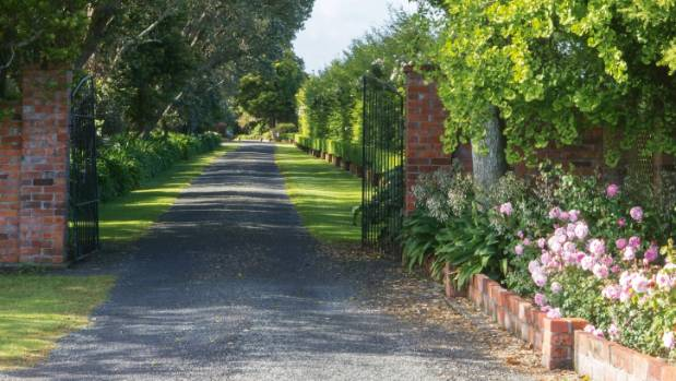 Trees, hedges and roses frame this rural driveway.